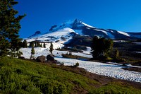 Mt. Hood at timberline